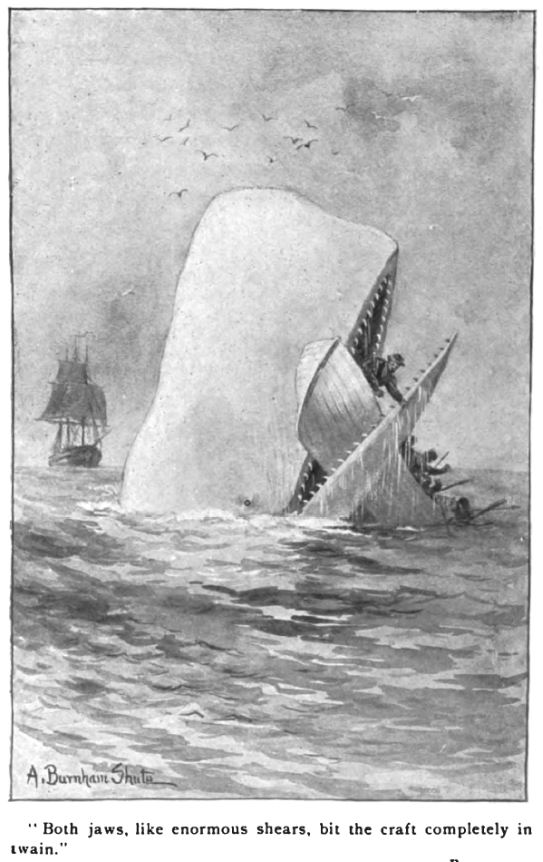history - Whale-biting-whale-boat.jpg